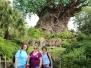 SOJ Band Disney Trip - Day 7